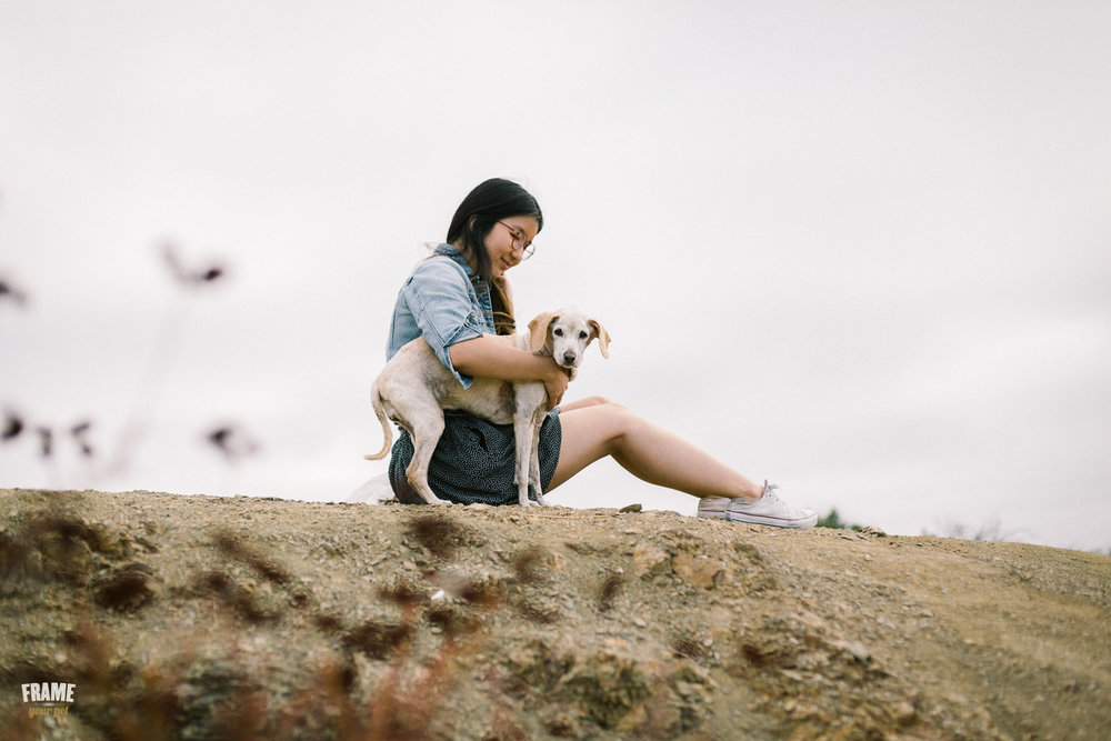ARP_0587-dog-photographer-los-angeles-pet-photography-santa-monica-animal-photos.jpg