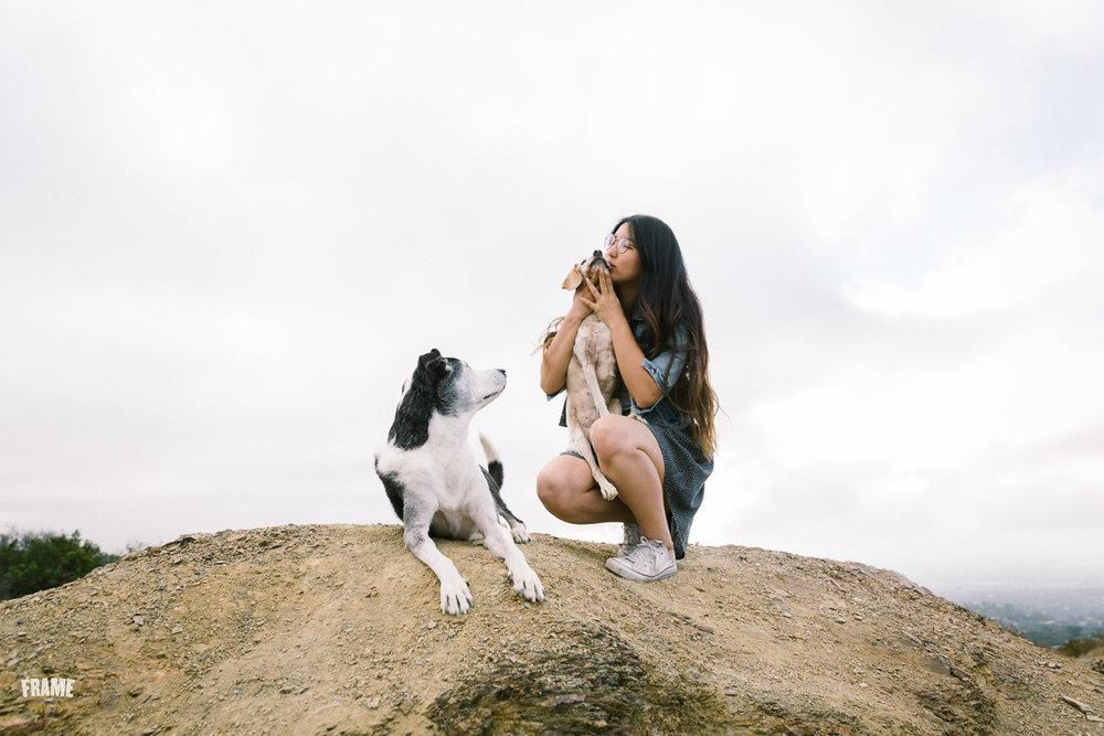 ARP_6365-dog-photographer-los-angeles-pet-photography-santa-monica-animal-photos.jpg