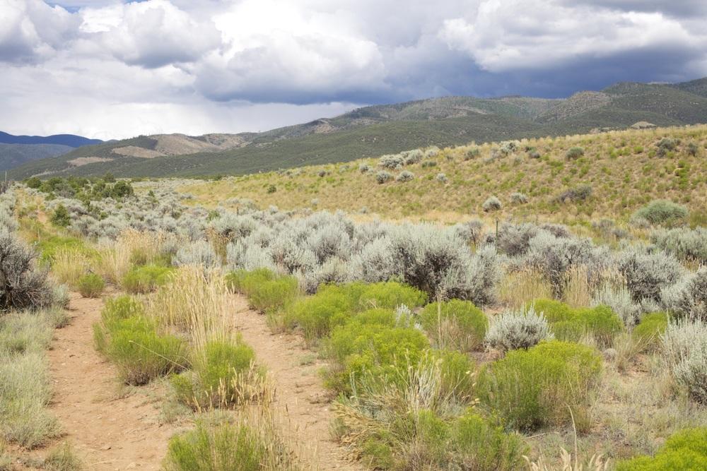 The road toward the Pueblo, Taos.
