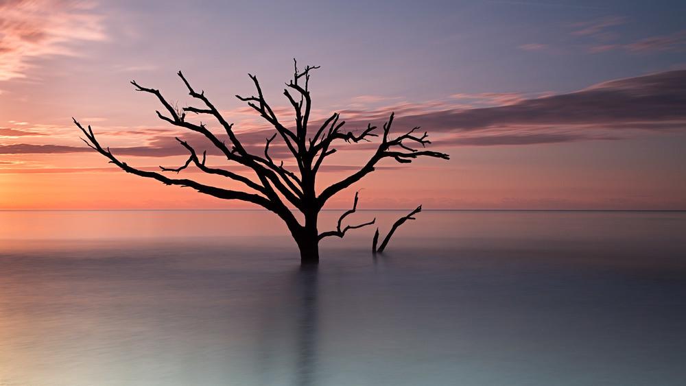 A Typical Daydream (Edisto Island, SC)