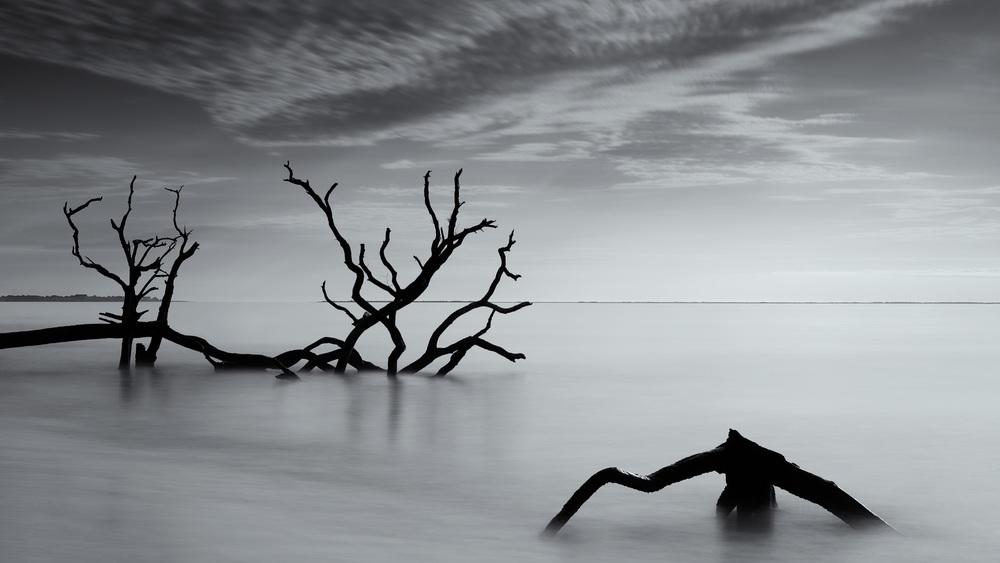 Friend of the Devil (Edisto Island, SC)