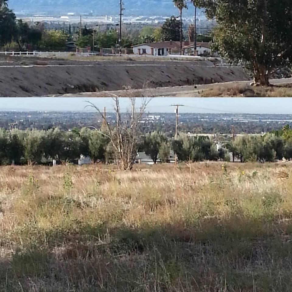 San Bernardino Wakes