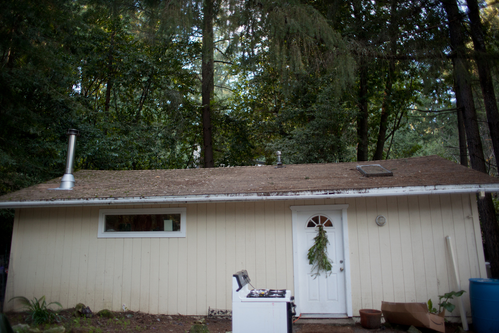 The Evans family lives at the summit of the Santa Cruz Mountains in a 500sqft home that has a bedroom, a bathroom, and a kitchen/living room combo. This September will mark 5 years in their humble abode.