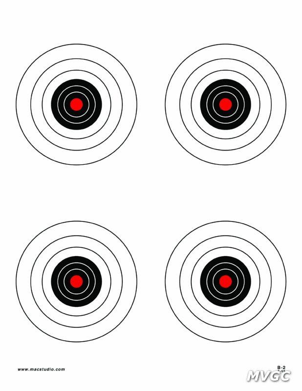 B-2 Target copy.jpg