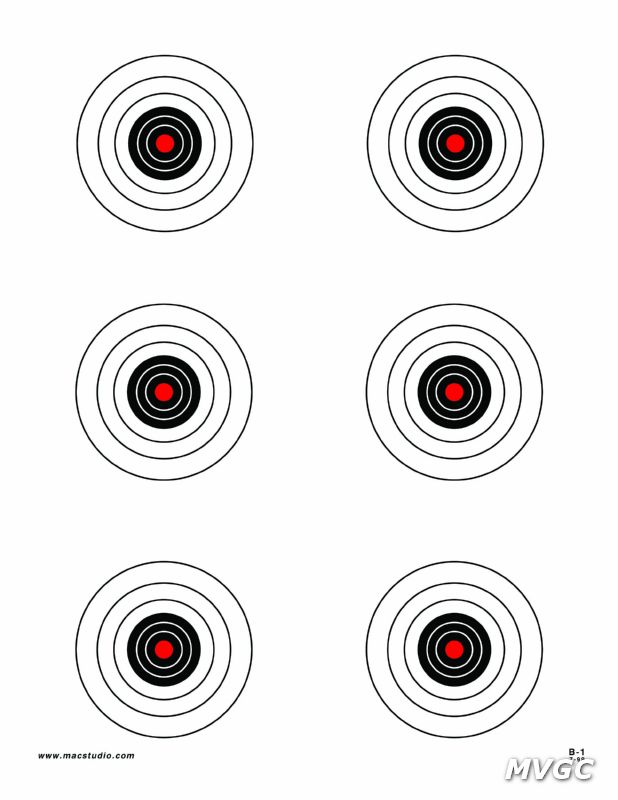 B-1 Target copy.jpg