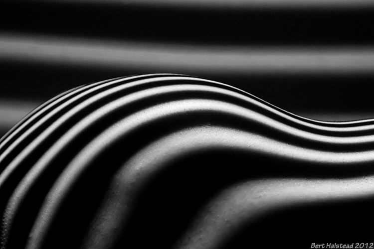 striped_bodyscape_by_bhalstead-d5ex01q.jpg
