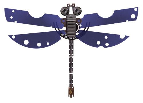 dragonflyfriday.jpg