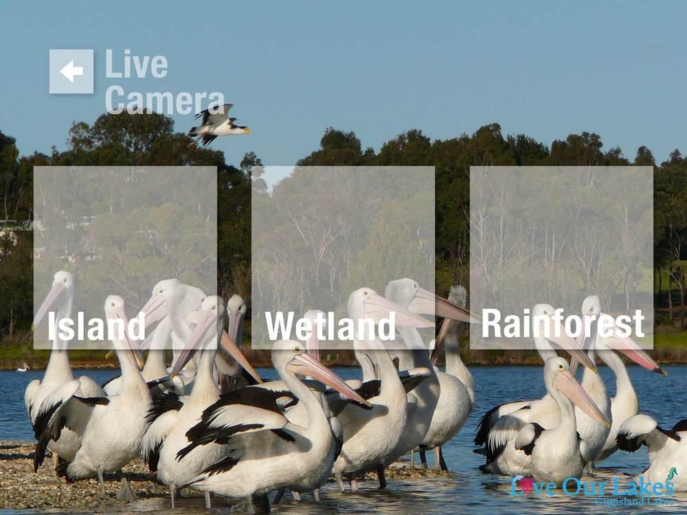 2.camera_menu.jpg