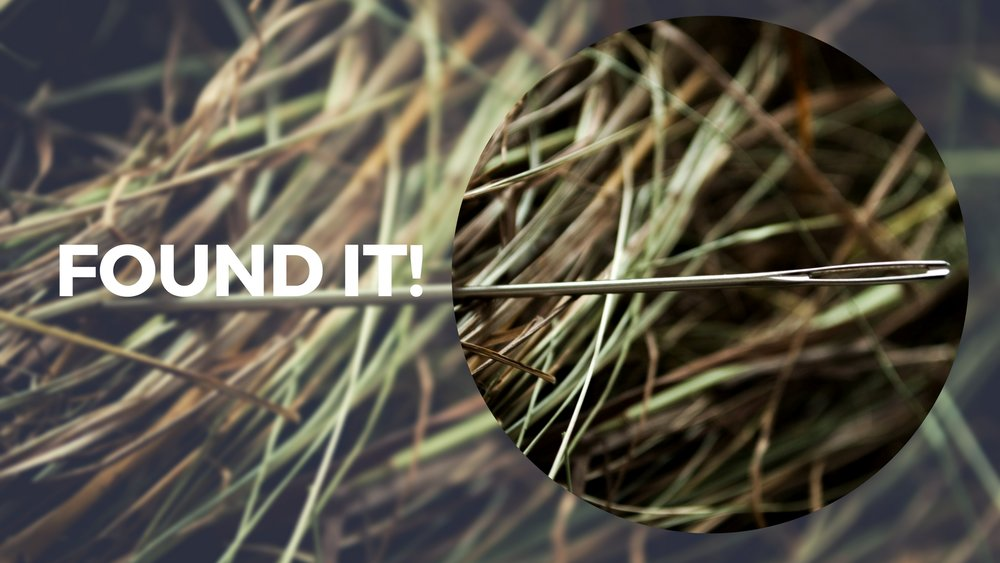 physical asset audit - needle in a haystack