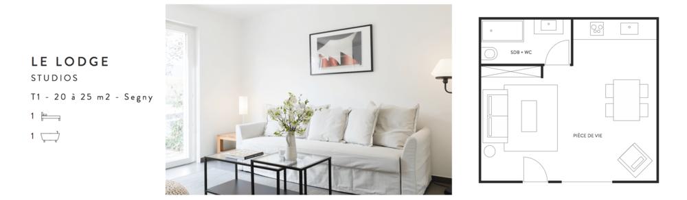 le-lodge-segny-gex-suisse-france-bumper-lyon-studio-investissement-achat-location-geneve-1