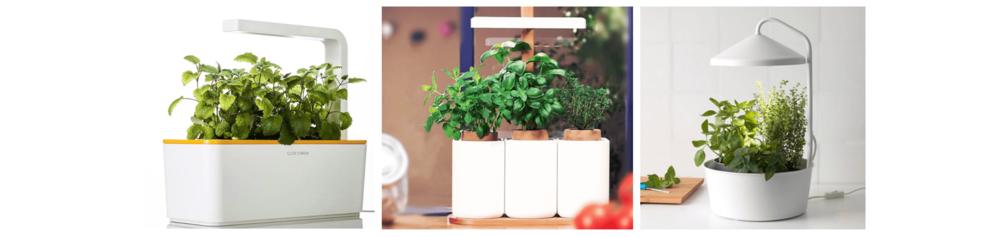 ←  Click and Grow  &  Lilo  &  Bittergurka (Ikea )→