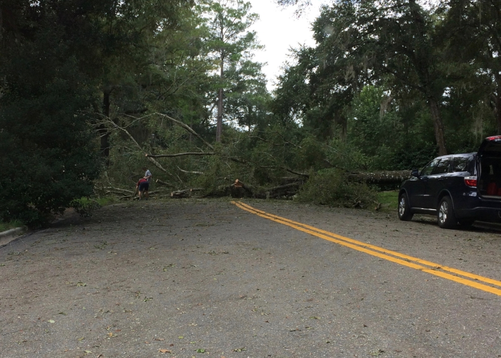 Some homes had serious damage.  This house had two large fallen trees that blocked the road
