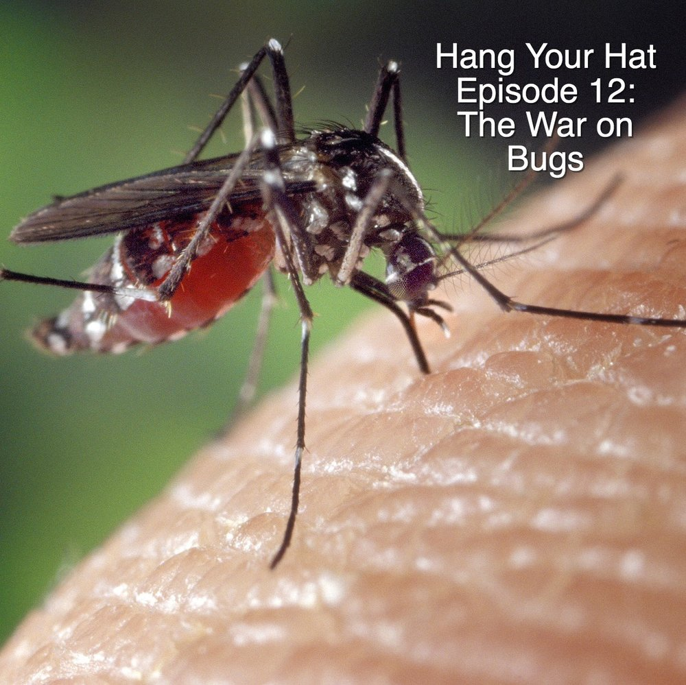 HYH Ep 12 The War on Bugs