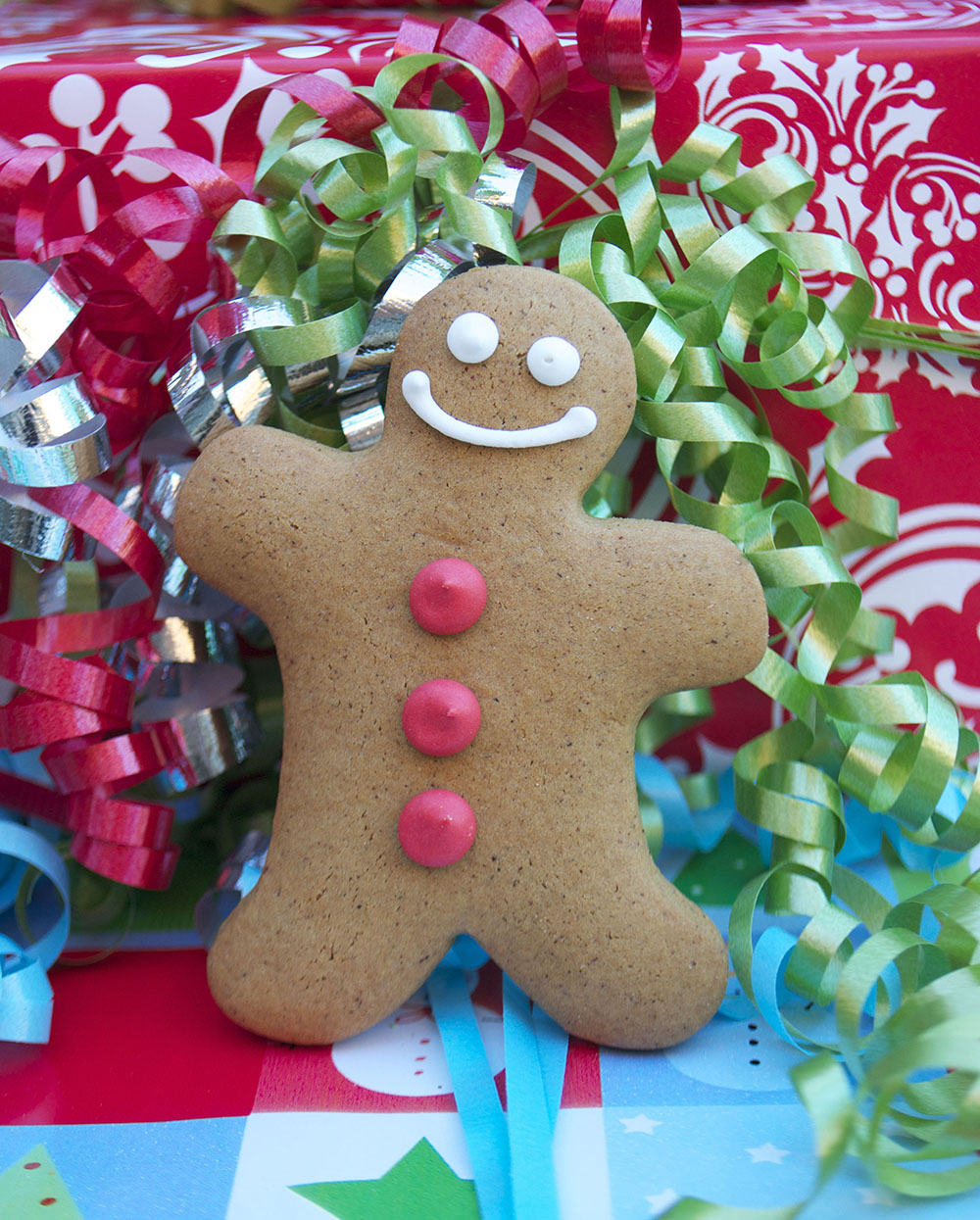 Bake Sale Toronto Christmas Holiday Gingerbread Man Person Facebook.jpg