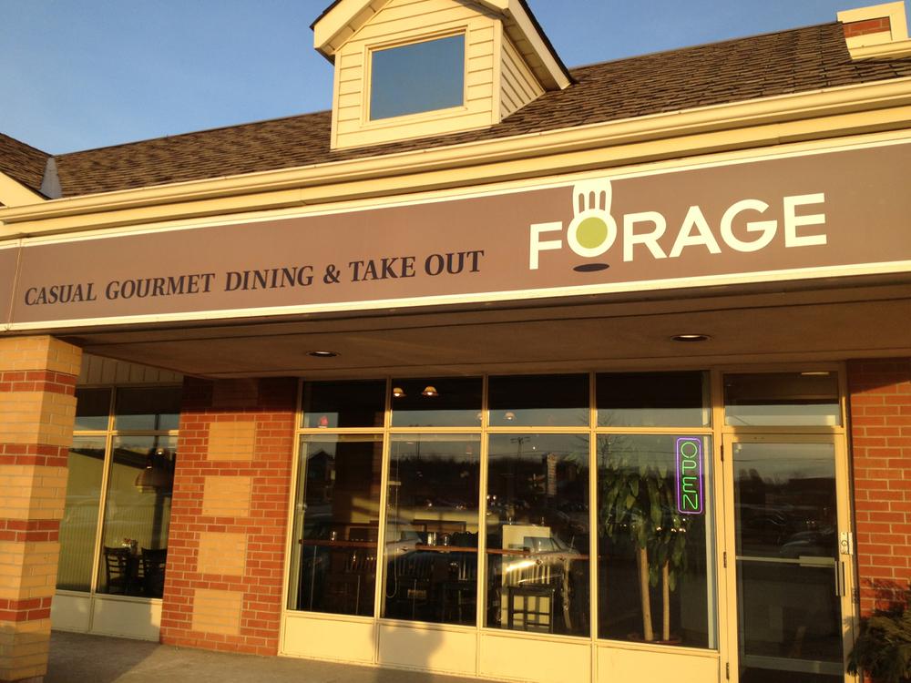 forage-1.jpg
