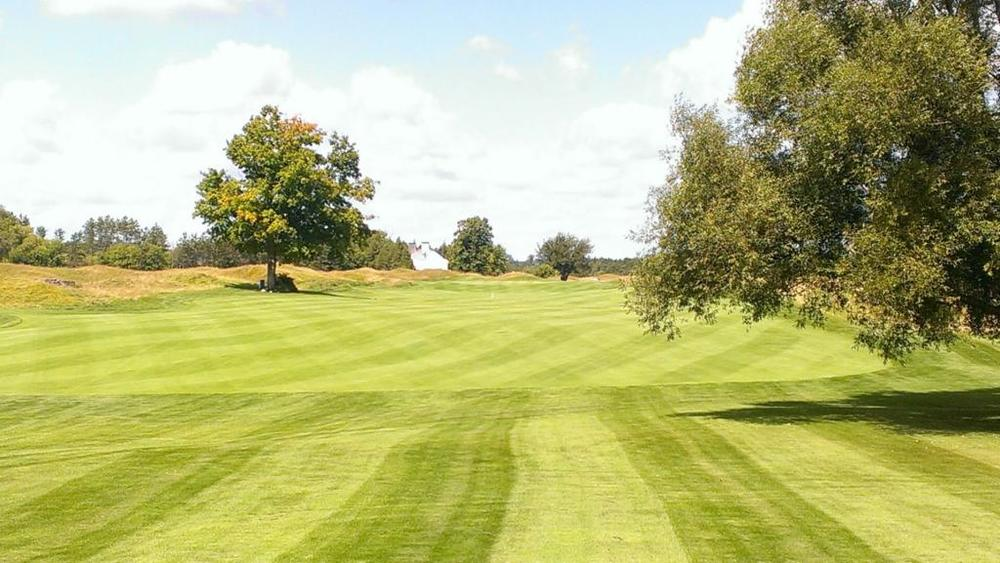 Heathlands #14 fairway by Scott Brook