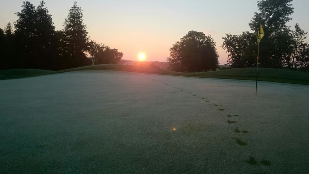 Sunrise over Heathlands #3 green by Scott Brooks