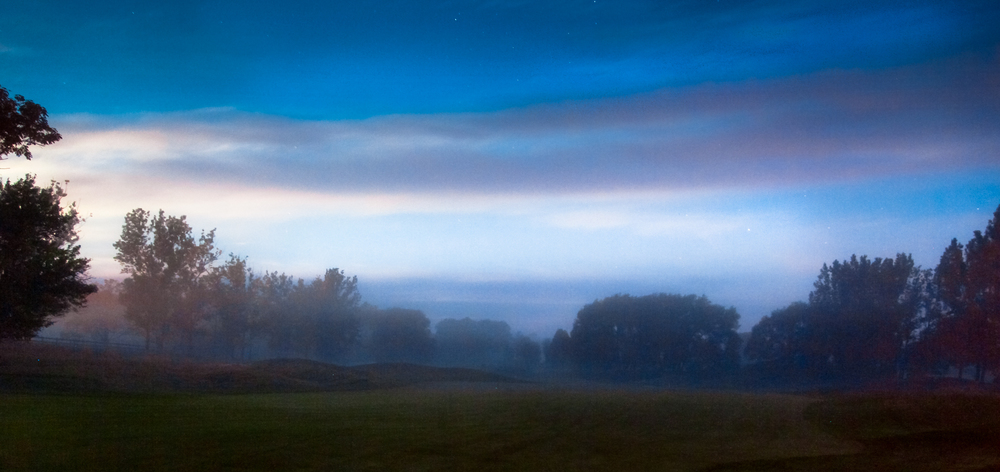 An evening mist descends on Heathlands
