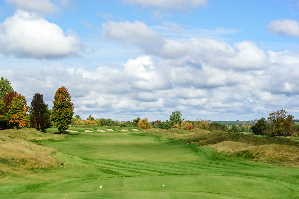 A peek at what is to come from the Heathlands #4 tees