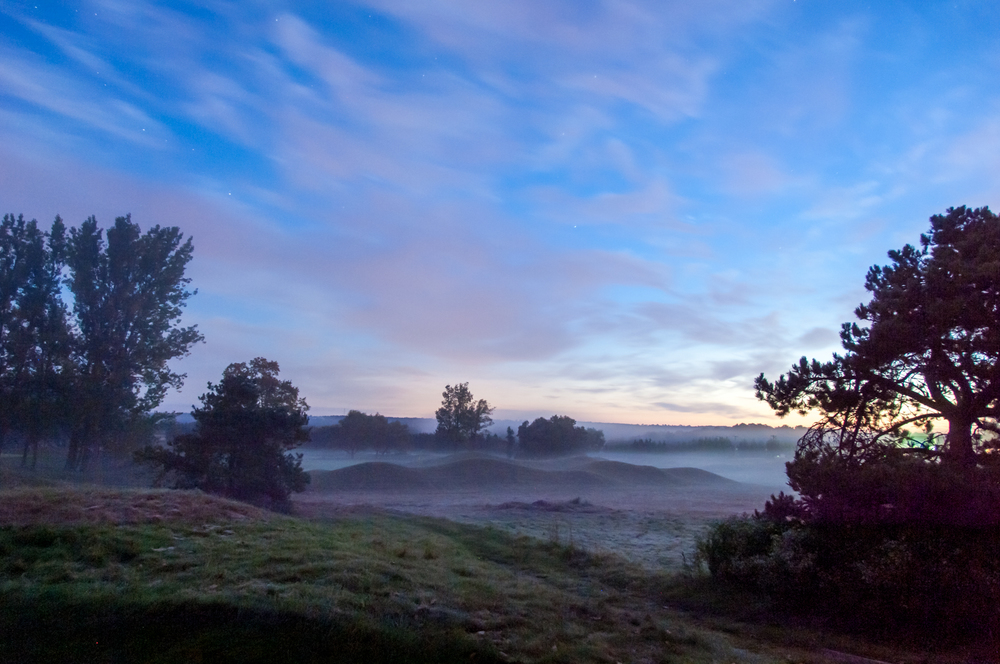 Morning mist on Heathlands #12