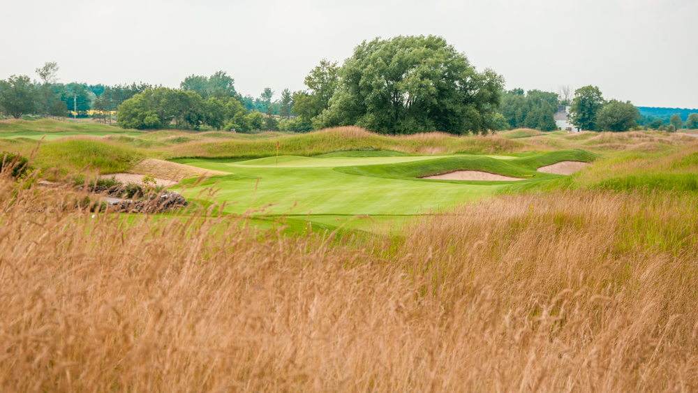 A view of Heathlands #13 over the fescue