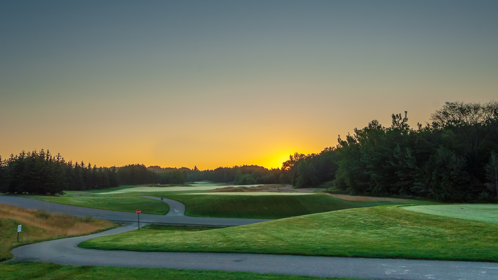 A summer sunset provides the backdrop to Hoot #11