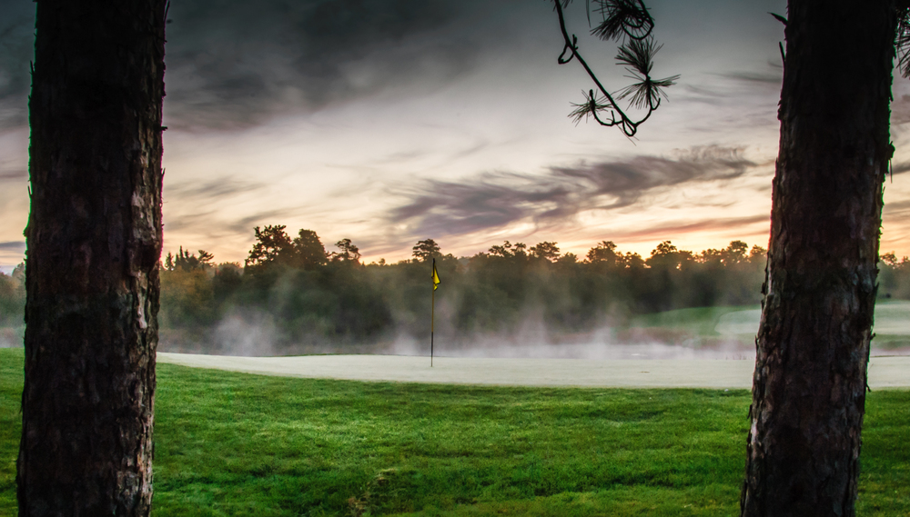 The morning mist rising behind the Hoot #13 green