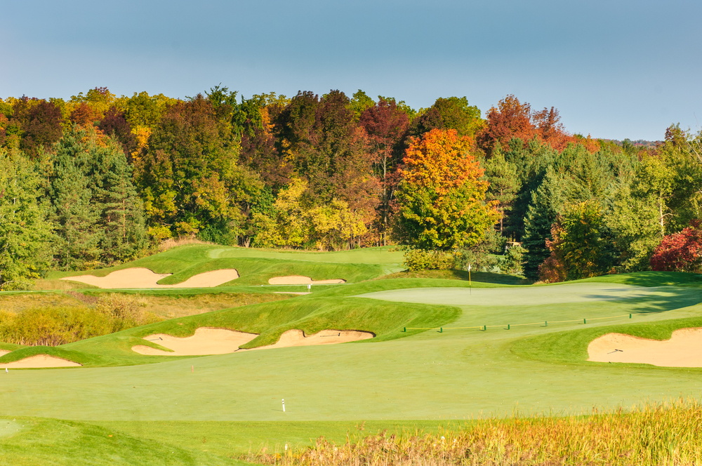 Fall colours overlooking the green on Toot #6