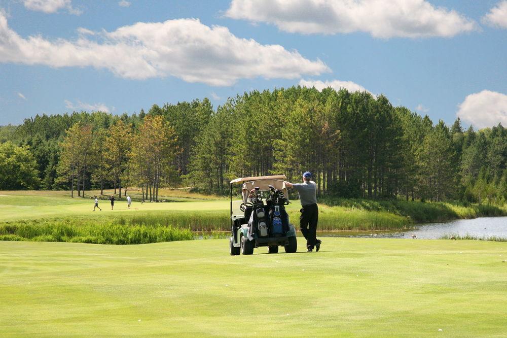 golf-for-golfers-hoot.jpg