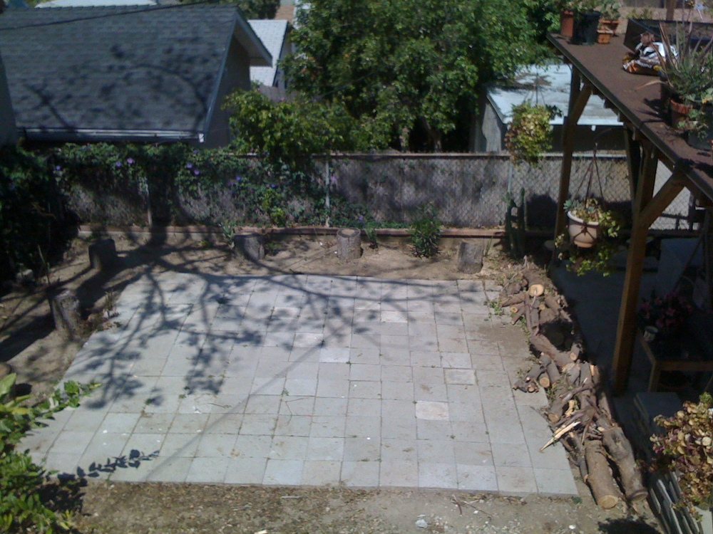 Backyard before.