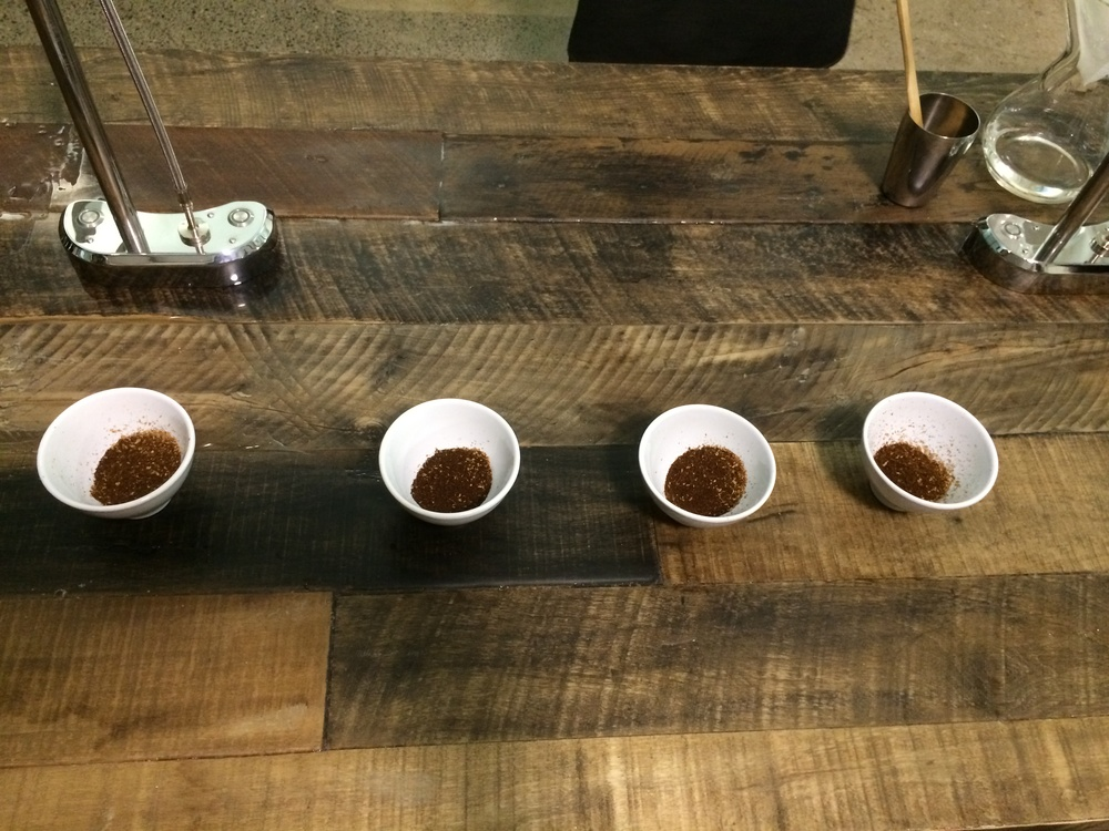 Cupping line-up.