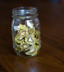 Kiwi Chips by Cara Comini