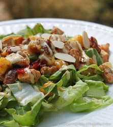 Mango Chicken Salad with Chipotle Mayo by Sarah Fragoso