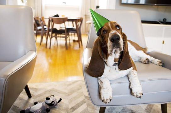 Michelle Siu Dean celebrating his second birthday.