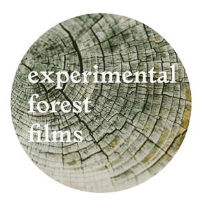 Experimental Forest Films