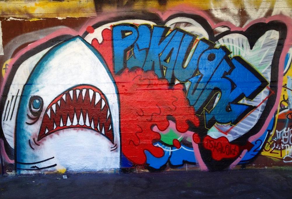 greenvienna-shark.jpg.p.jpg