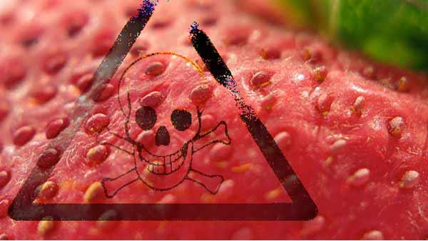 toxic strawberries