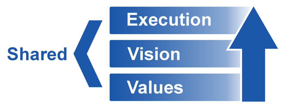 shared values vision execution