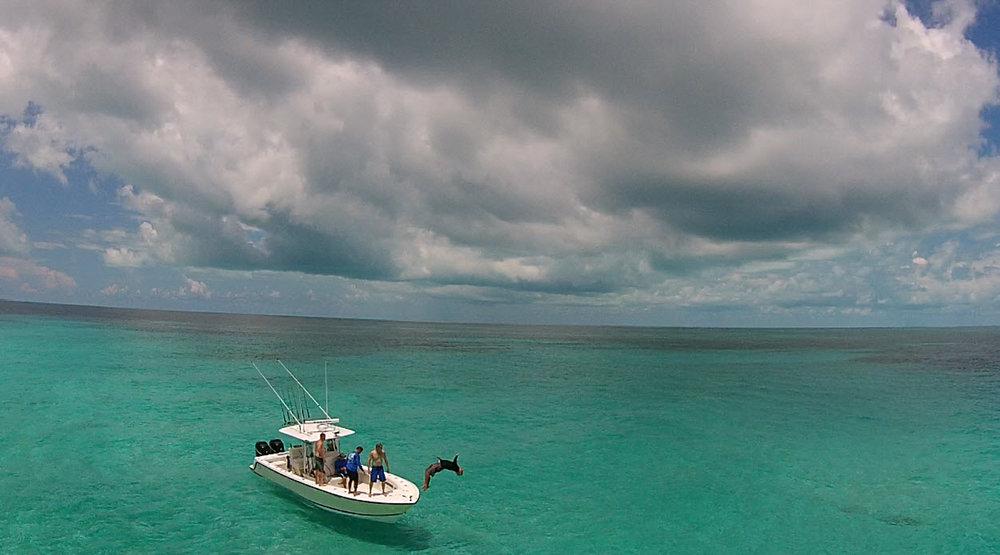 Bahama Flip (1 of 1).jpg