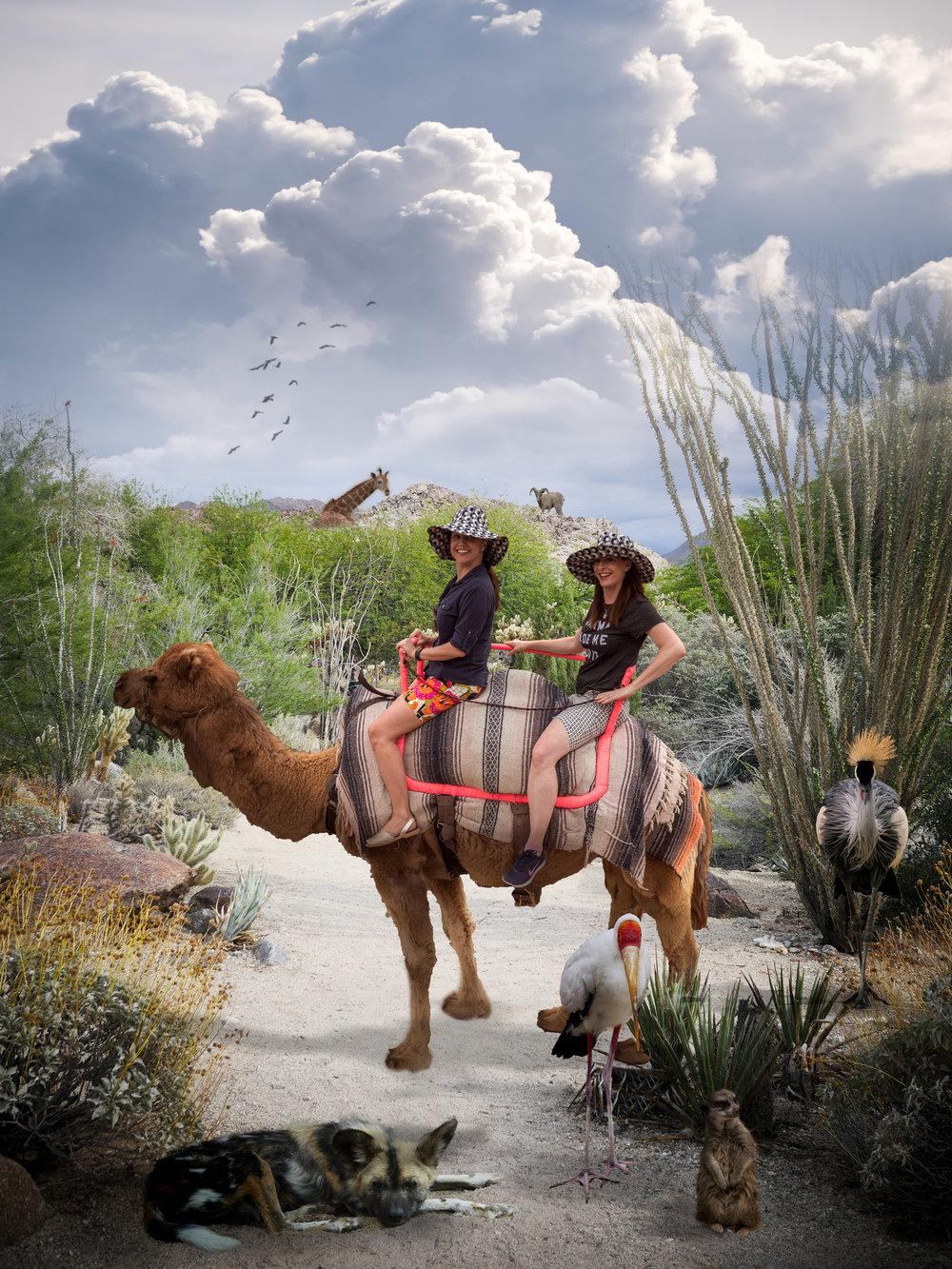 Jeanice Bridget Camel in Desert Scene.jpg