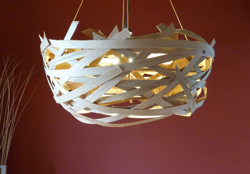 nest light shade.jpg