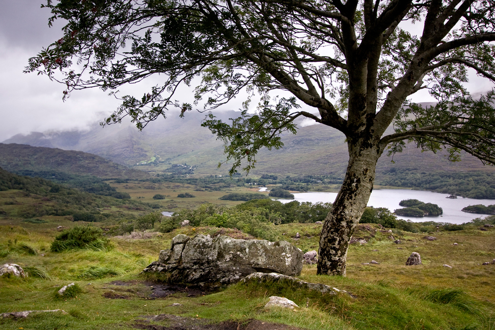 Killarney-national-park.jpg