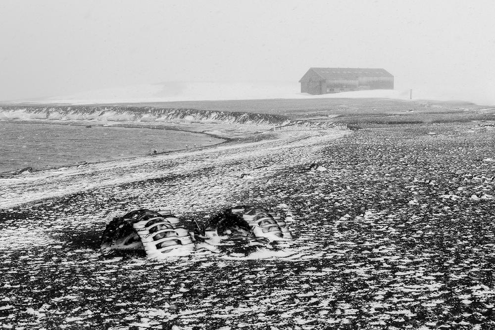 Abandoned Tractor - DECEPTION ISLAND