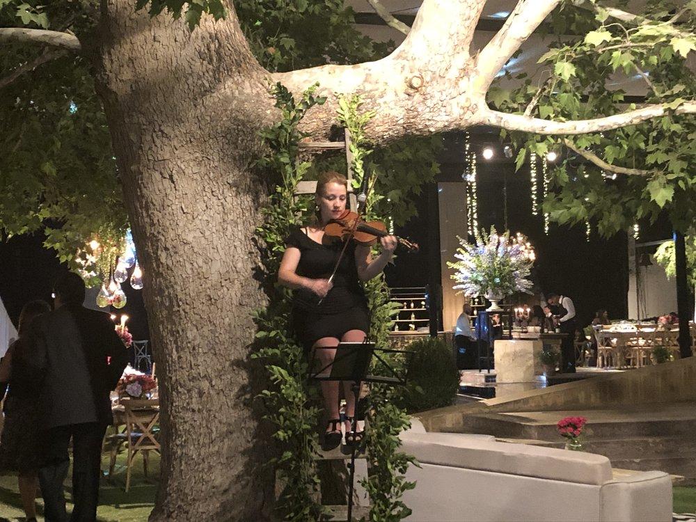 Violinista para eventos Agez Chile