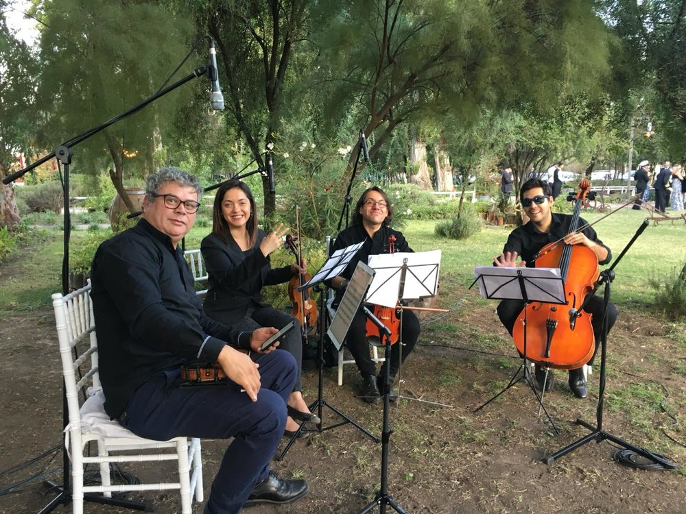 Cuarteto de cuerdas, músicos para eventos, matrimonios y ceremonias Agez Chile