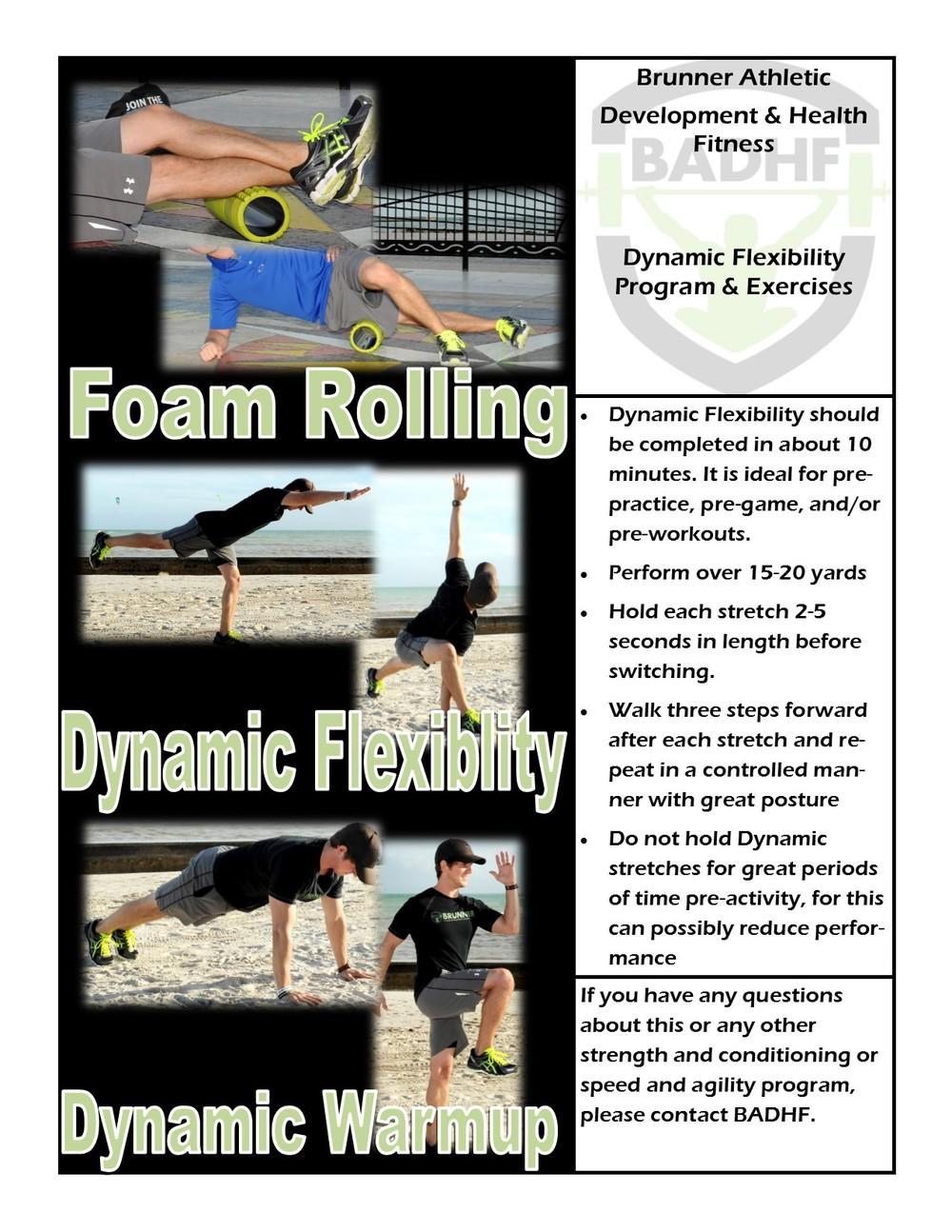 Dynamic Flex.jpg