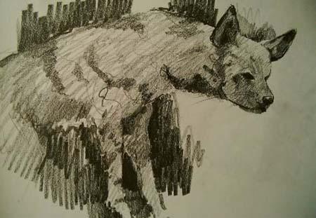 Hyena,Gabor Svagrik.jpg