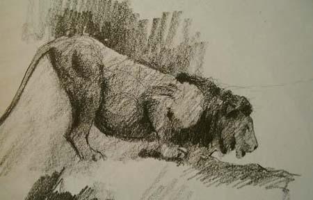 Lion,Gabor Svagrik.jpg