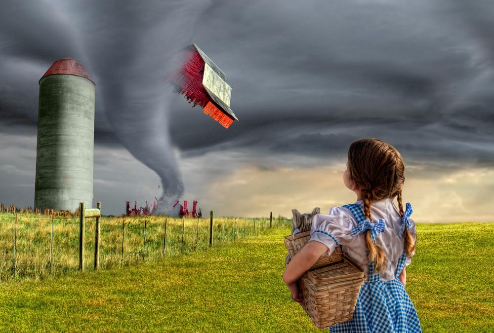 Dorothy and the Tornado (FINAL) v3.jpg