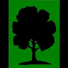 TreeNoBackground.png